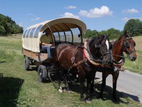 Familienausflug 2018 Seufert Ranch